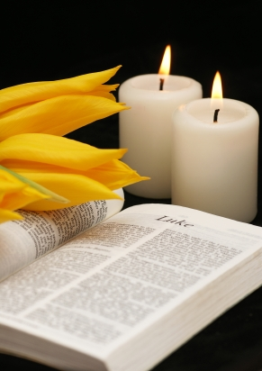 Bible, tulips and candles on black background